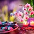 flowers based fan shui
