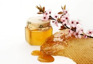 пчелния мед