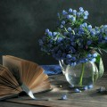 flowers in a vase 3
